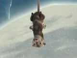 Mother Opossum