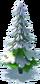 Larger medium tree