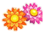 Cropped flower