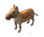 Horsebaby