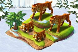 Completeleopard