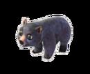 Black Bear Baby