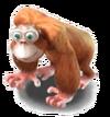 Animal-Ape