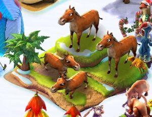 Brownhorse4