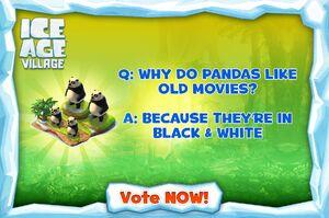 Panda joke