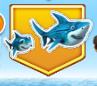 Whole baby shark