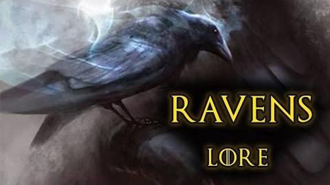 Raven - Game Of Thrones, A Song of Ice and Fire - Lore and History