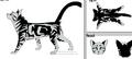 Thumbnail for version as of 19:53, November 11, 2012