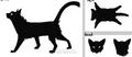 Thumbnail for version as of 20:38, November 11, 2012