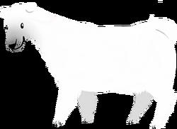Cow polarbear