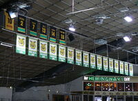 Ilves banners