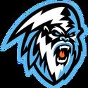 Kootenay 2017 logo