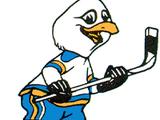 San Diego Gulls (1966-74)