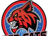 Niagara Red Cats