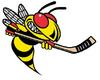 Langley Hornets