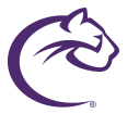 Chatham Cougars logo