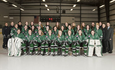 2015-16 Stevenson Mustangs women's team