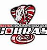 Milton Battle Arts Cobras