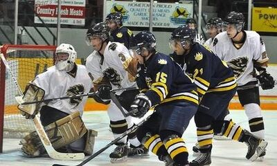 Bisons-at-lakehead-2010-2