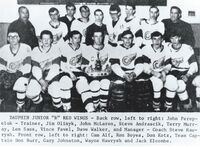 1966-67 Dauphin Jr. B Red Wings MB-SK Champions