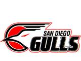San Diego Gulls (1990-95)
