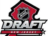 2013 NHL Entry Draft