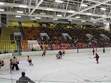 Steve Yzerman Arena