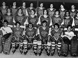 Buffalo Bulls men's ice hockey