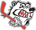 Penrith Bears logo