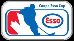 Esso Cup logo