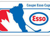 2019 Esso Cup