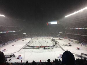2014 NHL Stadium Series, Soldier Field