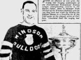 1930-31 IHL season