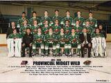 2017-18 Winnipeg Wild season