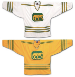 Chicago Cougars jerseys