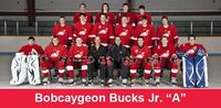 2010-11 Bobcaygeon Bucks