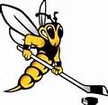 Wisconsin Superior Yellowjackets alt logo