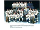 1984–85 St. Louis Blues season