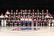 1990-91 Jets