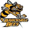 Bracknell Bees logo