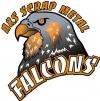 Sherwood Falcons logo