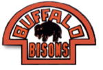 Buffalo bisons 1933-34