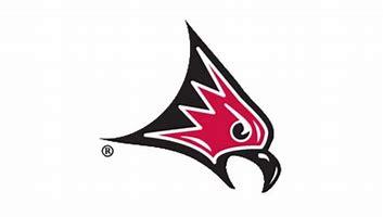 Wisconsin-River Falls Falcons