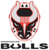 BirminghamBulls