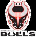 BirminghamBulls.png