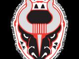 Birmingham Bulls (ECHL)