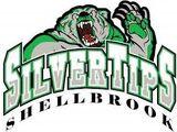 Shellbrook Silvertips
