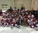2016-17 SEMHL season