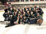 2017-18 College Hockey America Season