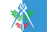 Izhevsk Flag